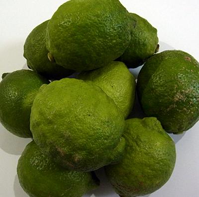 lemon111026.jpg